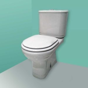 Tapa de WC Jacob Delafon Altair compatible